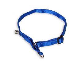 MesAmis Hundehalsband royalblau