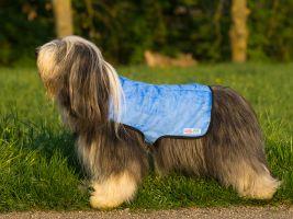 Cool Coat - Blau - Gr. M (Beardie-Hündinnen)