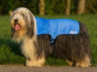 Cool Coat - Blau - Gr. L (Beardie-Rüden)